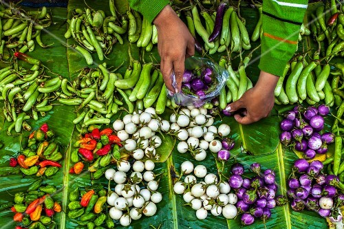 Aubergines and chillis at a market (Rangoon, Myanmar)