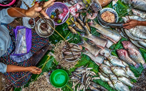 Fish being sold in the streets of Rangoon, Mayanmar