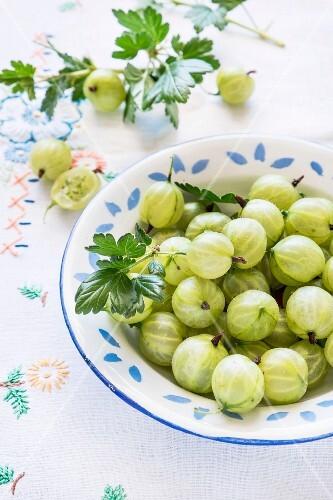Fresh green gooseberries