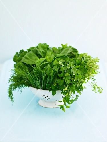 Various fresh herbs in an enamel colander