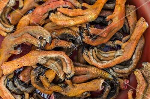 Duck feet at a market (Vientiane, Laos)
