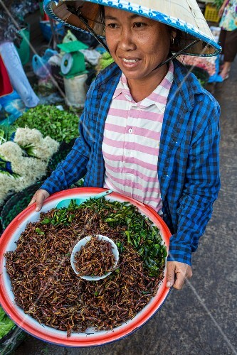 A woman holding a bowl of grilled grasshoppers at a market (Vientiane, Laos)