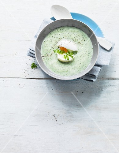Cream of chervil soup garnished with egg