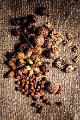 Walnuts, hazelnuts and chestnuts on a piece of jute