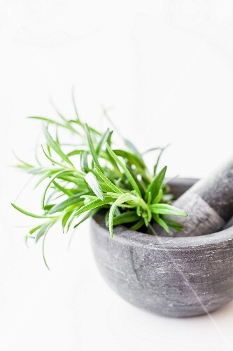 Fresh rosemary in a stone mortar with a pestle