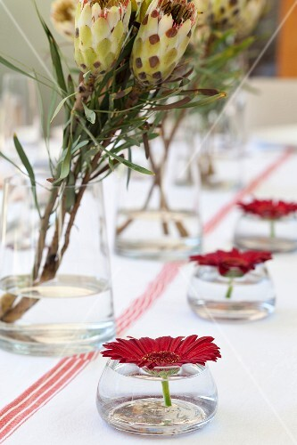 Flowers in glass vases decorating table
