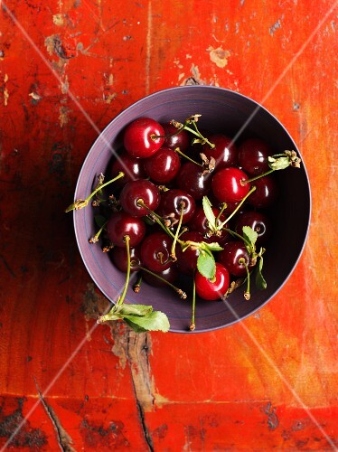 A bowl of sour cherries with leaves