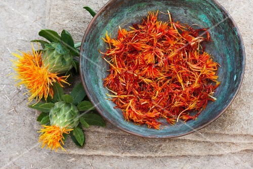Safflower: fresh flowers and plucked, dried petals in a metal bowl