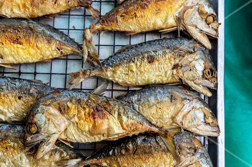Fried fish, Bangkok