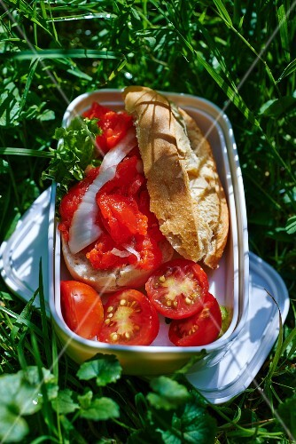 A pollack and tomato sandwich in a picnic tin