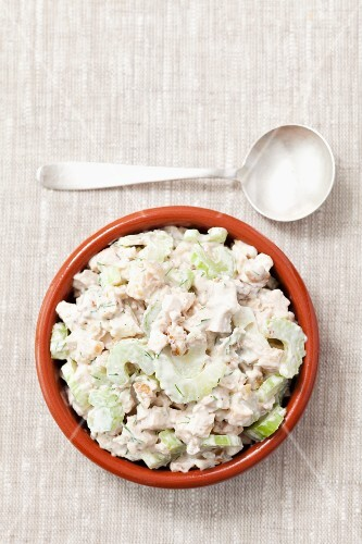 Grilled chicken, celery, walnut and mayonnaise spread