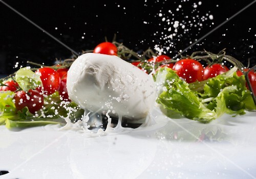 Mozzarella falling with a splash into milk with vine tomatoes and lettuce leaves in the background