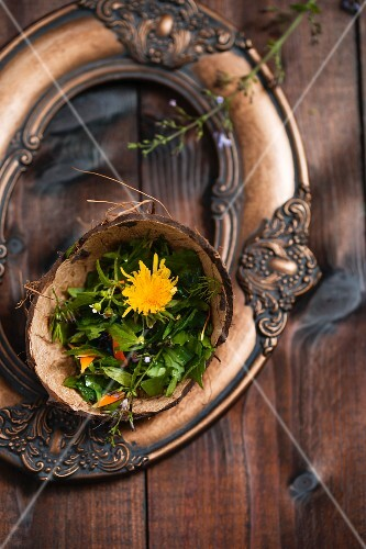 Wild herb salad served in the coconut shell on a picture frame