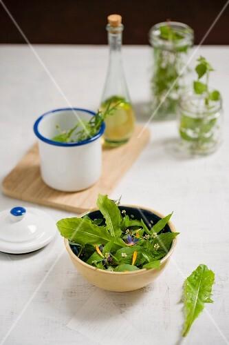 Dandelion and quickweed salad