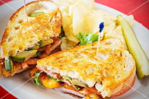Chicken and avocado sandwich with Cheddar cheese