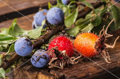Rosehips and sloes on a wooden crate