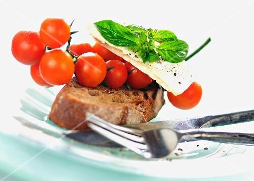 Tomatoes, mozzarella and basil on toasted bread