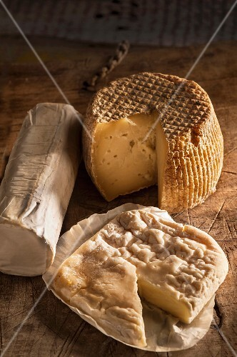Various types of Italian goat's cheese
