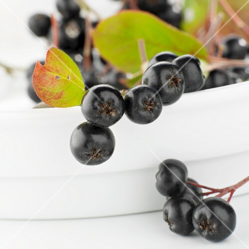 Aronia berries with leaves in a bowl