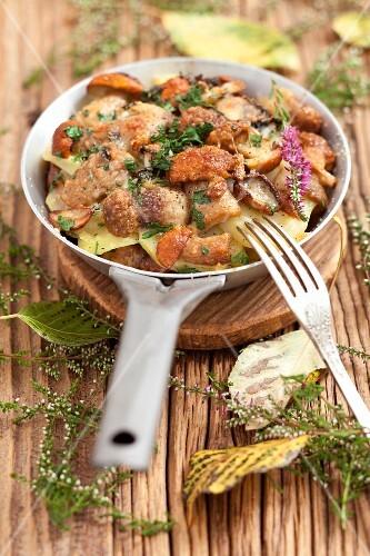 Porcini mushroom bake with potatoes