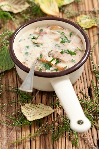 Porcini mushroom sauce with pancetta and cream