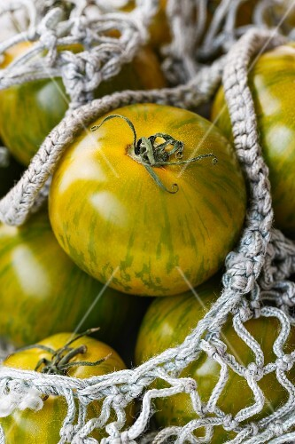 Green tomatoes in a shopping net (close-up)