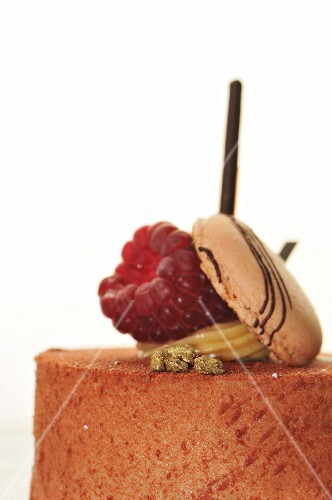 A cake topped with a raspberry and a macaroon (close-up)