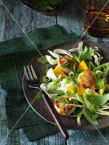 Herb salad with scallops, fennel and mango