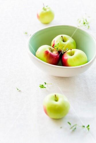 A bowl of Christmas apples