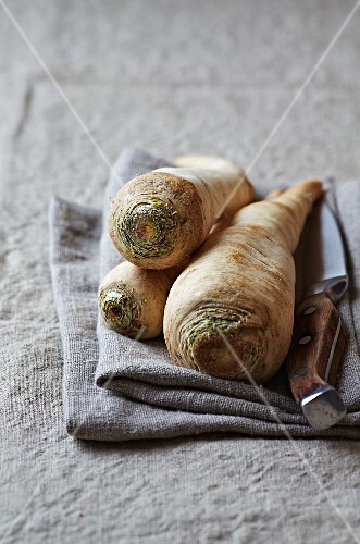 Parsley root and a kitchen knife on a linen cloth
