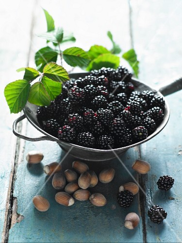 Blackberries and hazelnuts