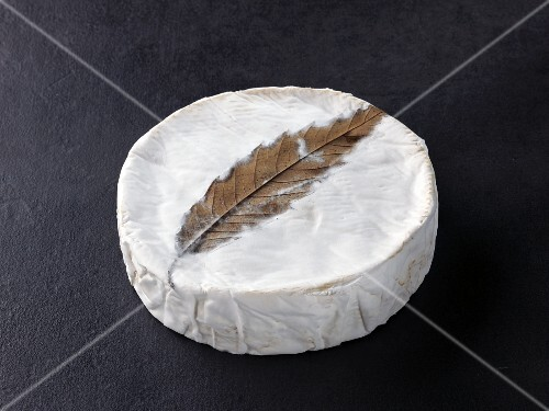 Feuille de Dreux (French cow's milk cheese)