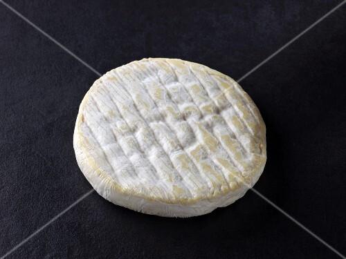 Palet de vache (French cow's milk cheese)