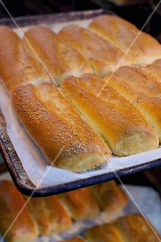Freshly baked sesame seed loaves on a baking tray