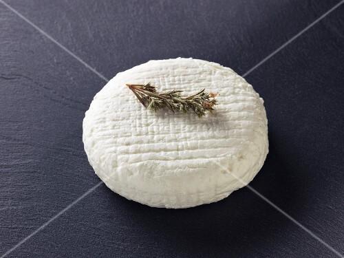 Chevre a la sariette (French goat's cheese)