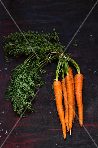 A bunch of fresh carrots with leaves on dark surface