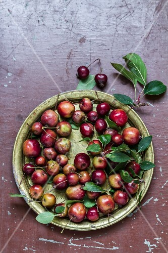 Ornamental apples and cherries and a metal plate with leaves