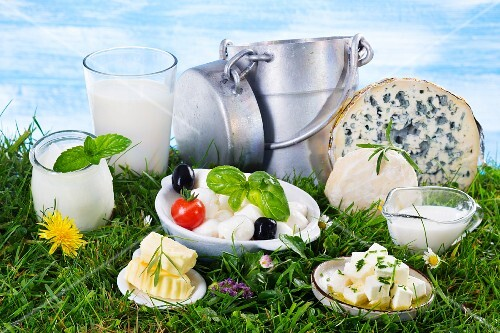 An arrangement of dairy products in a green field