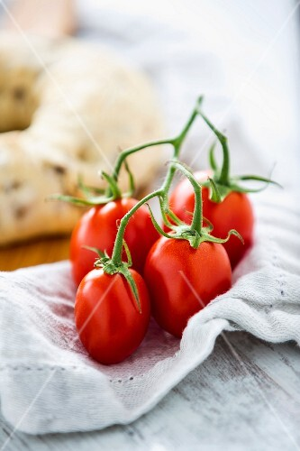 Vine tomatoes on a cloth