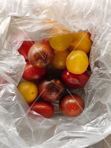 Various freshly washed tomatoes in a plastic bag
