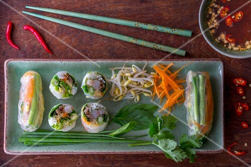 Vietnamese spring rolls and a dip