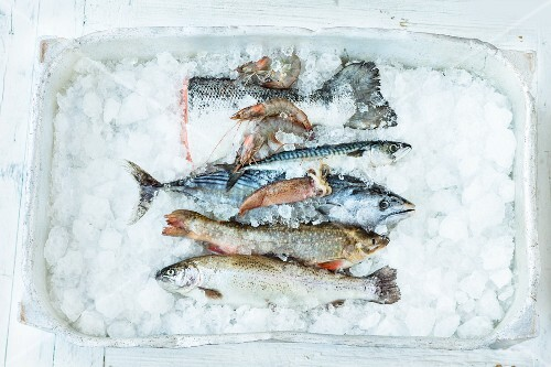 Sustainably caught fresh fish on ice