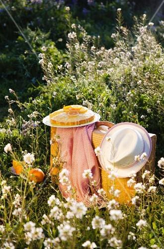 Sponge cake with orange glaze for a picnic