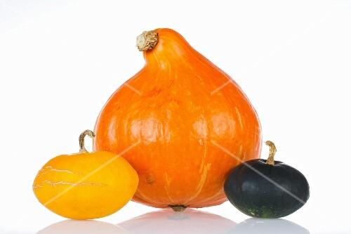 Three different types of squash