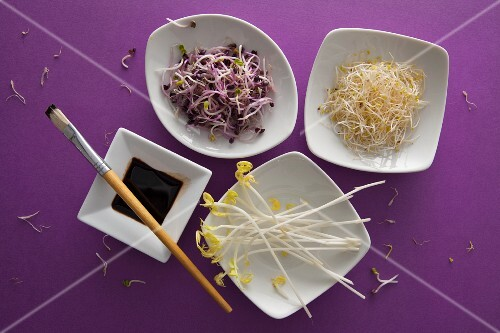 Various types of bean sprouts in white bowls