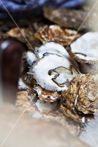 Leftover oyster shells (close-up)