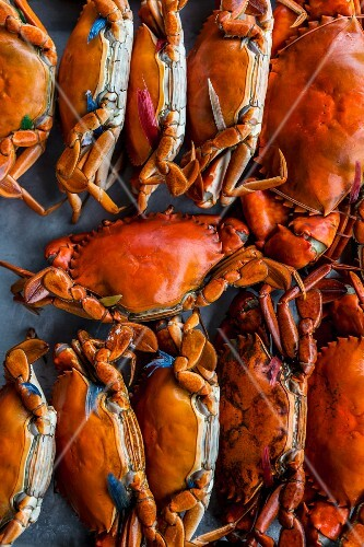 Steamed crabs at a market (Chanthaburi, Thailand)
