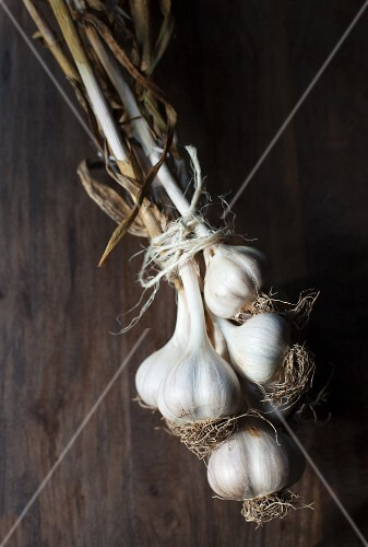 A bundle of garlic on a wooden surface