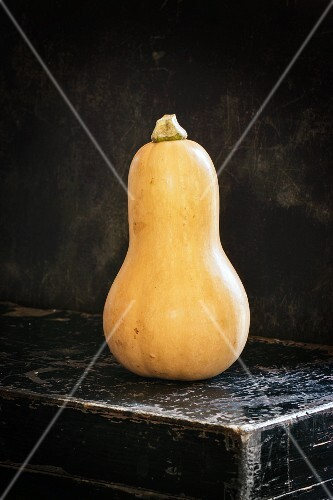 Butternut squash on an old black chest
