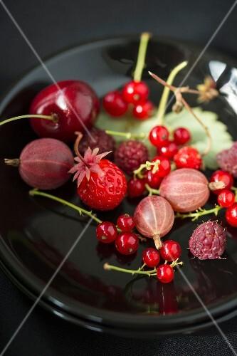 Various berries on a plate (redcurrant, gooseberries, raspberries, wild strawberries and cherries)